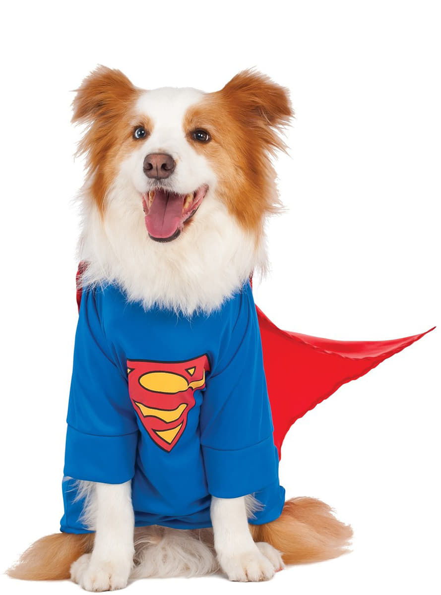 Adult dog costume plus size